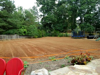 Backyard Grading for Grass Seed